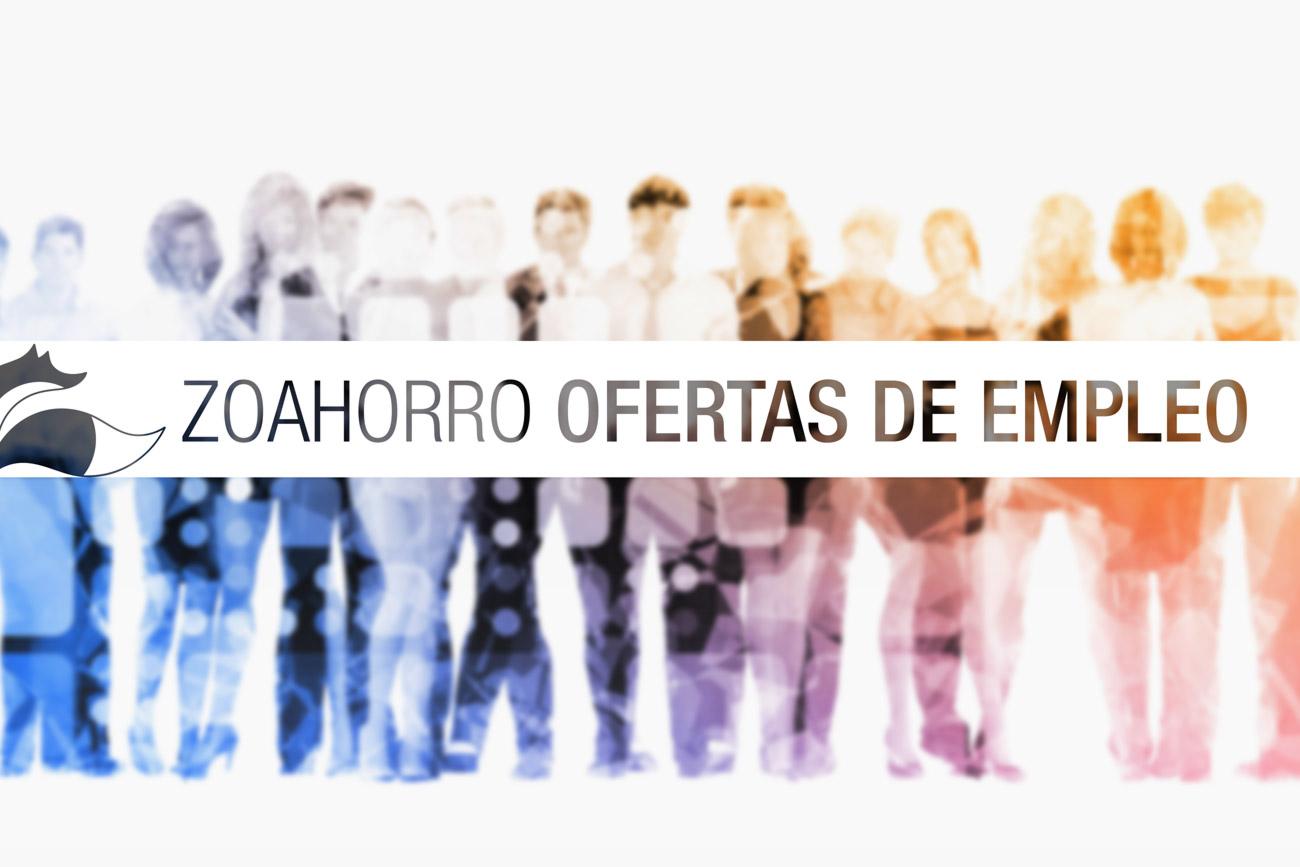 Ofertas de empleo (1)
